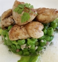 Lamb Sweetbreads with Peas
