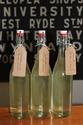 Picture for category Elderflower & Lemon Cordial