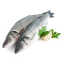 Picture for category Fresh Fish