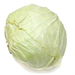 Picture of White Cabbage