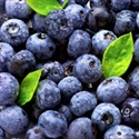 Picture of Cammas Hall Blueberries (125g)