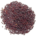 Picture of Mustard Seed, Black (50g)