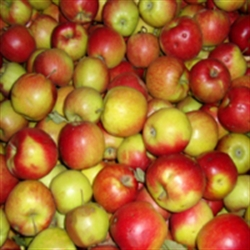 Picture of Jonagold Apples
