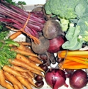 Picture for category Organic Veg