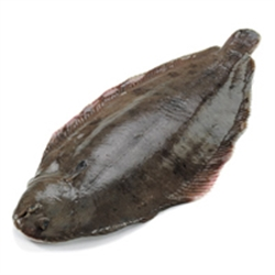 Picture of Medium Dover Sole (apx 350g, £30 / kg)