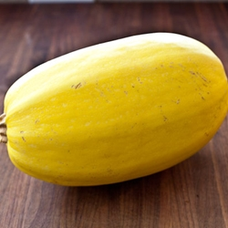 Picture of Spaghetti Squash
