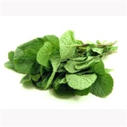 Picture of Fresh Mint (50g)