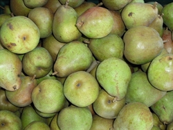 Picture of Comice Pears (500g @ £2.50 / kg)