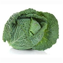 Picture of Tundra Cabbage