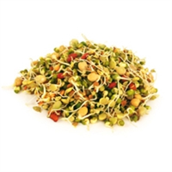 Picture of Mixed Bean Sprouts (120g)