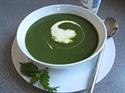 Wild Nettle Soup