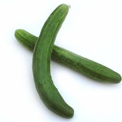 Picture of Long Cucumber