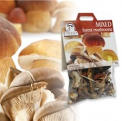 Picture of Dried Mixed Forest Mushrooms (25g)