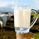 Picture for category Raw Dairy