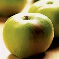 Picture of Organic Bramley Apples