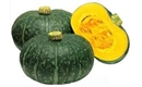 Picture of Kobacha Squash