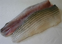 Picture of Cornish Grey Mullet Fillet (approx 200g - £22 per kg)