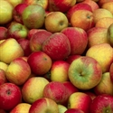 Picture of Kentish Cox Apples (1kg)
