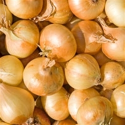 Picture of Brown Onions BULK BUY (2kg)