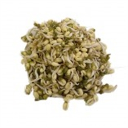 Picture of Mung Bean Sprouts (115g)
