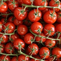 Picture of Vine Tomatoes BULK BUY (1kg)