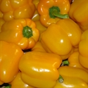 Picture of Yellow Peppers x 2 (apx. 400g, £4 / kg)