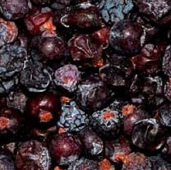 Picture of Juniper berries, dried (20g)