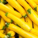 Picture of Courgettes, yellow, Big Bag (1kg)