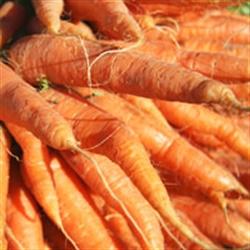 Picture of Walmestone Carrots (500g)