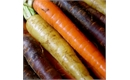 Picture of Rainbow Carrots