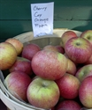 Picture of Cox's Orange Pippin Apples (500g)