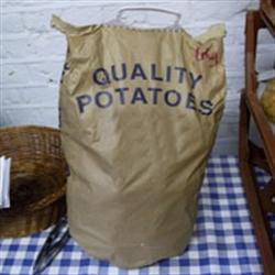 Picture of King Edwards Potatoes Mini-sack (6.25kg)