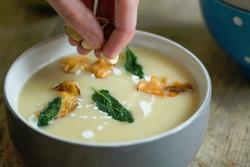 Picture of Celeriac & Apple Soup