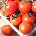 Picture of Round Tomatoes, BULK BUY (1kg)
