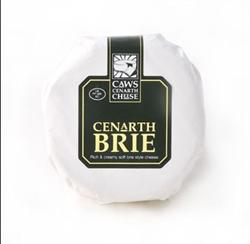Picture of Cenarth Mini Brie (200g)