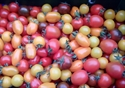 Picture of Cherry Tomatoes, mixed (250g)