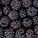 Picture of Essex Blackberries x 2 (approx 250g)