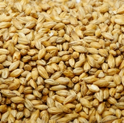 Picture of Barley Grain (600g)