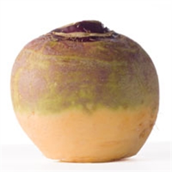 Picture of Swede