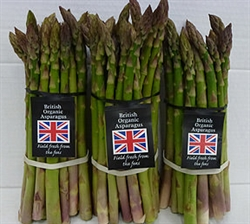 Picture of Asparagus, bunched (2 x 250g)