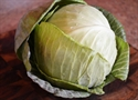 Picture of Small White Cabbage