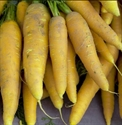 Picture of Yellow Carrots (500g)