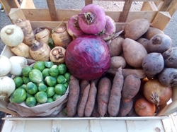 Picture of Deluxe Christmas Veg Box