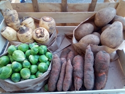 Picture of Small Christmas Veg Box