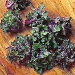 Picture of Flower Sprouts (250g)