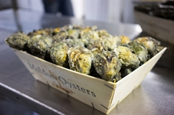 Picture of Maldon Rock Oysters x 25
