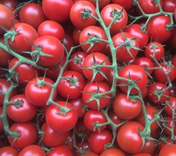 Picture of Cocktail vine Tomatoes