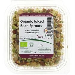 Picture of Mixed Bean Sprouts (227g)
