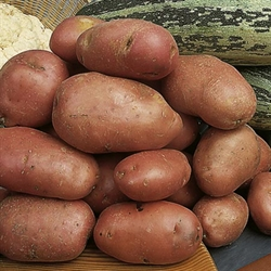 Picture of Red Desiree Potatoes (1kg)