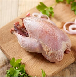Picture of Whole Partridge